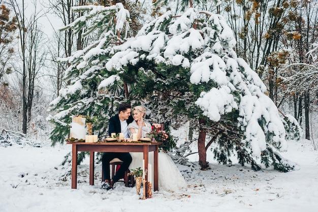 Noiva e noivo posando ao ar livre no inverno