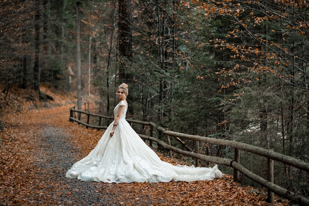 Noiva loira linda no vestido de noiva chiffon leve posando perto das montanhas