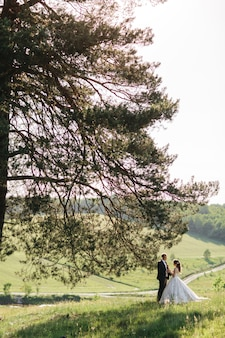 Noivas bonitas estão em pé debaixo de uma árvore no verão