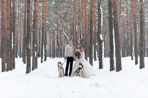 Noivos alegres com dois husky siberiano são colocados no fundo do bosque nevado.
