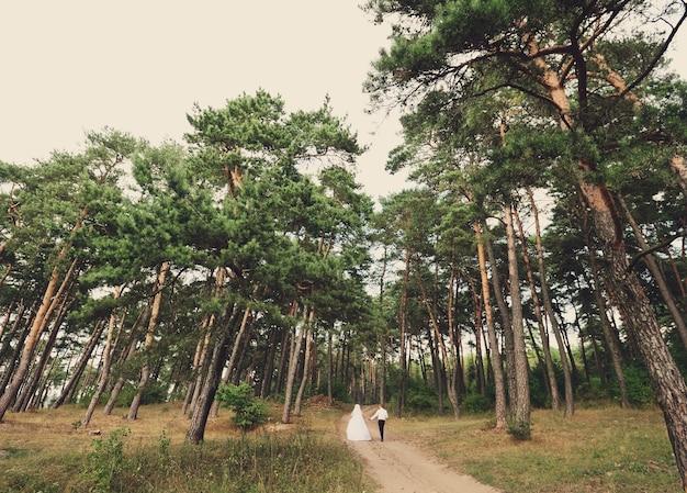 Noivos e noivos felizes em pine grove
