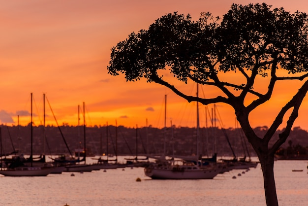 North san diego bay sunset
