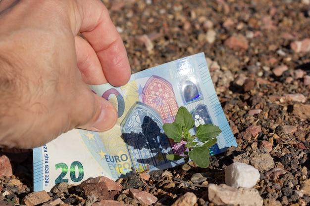 Nota de 20 euros enterrada no solo por uma pequena planta verde conceito de investidor de dinheiro de propriedade