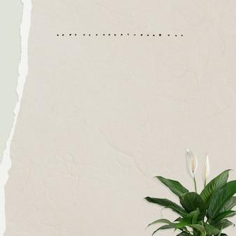 Nota de papel com planta de lírio da paz