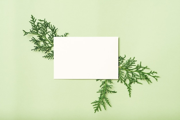 Nota de papel em branco branco ou cartão com decoração de zimbro.
