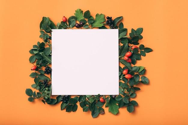 Nota de papel em branco ou cartão com folhas, vista superior