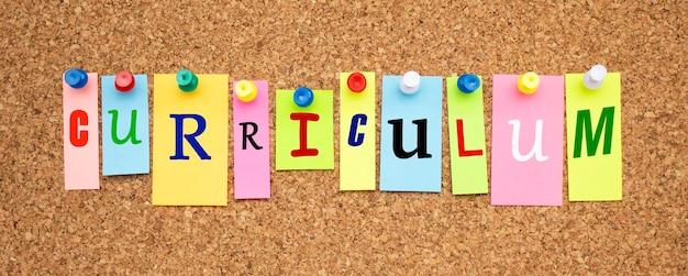 Notas coloridas com letras fixadas em um quadro. currículo word