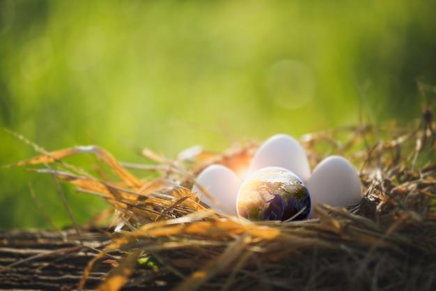 Nova geração do mundo no ninho de galinha com ovos. conceito do dia da terra. elemento desta imagem fornecida pela nasa