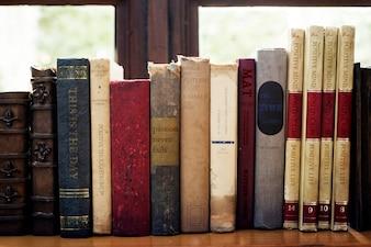 Novelas de motivação motivacional biblioteca aprender estudo