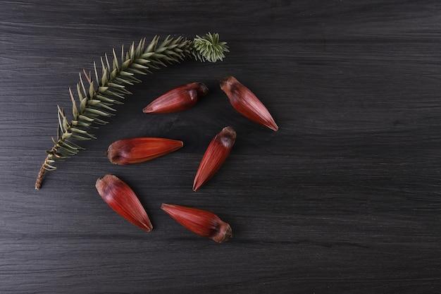 Nozes de pinhão brasileiro em tigela de madeira marrom e vermelha sobre fundo cinza de madeira.