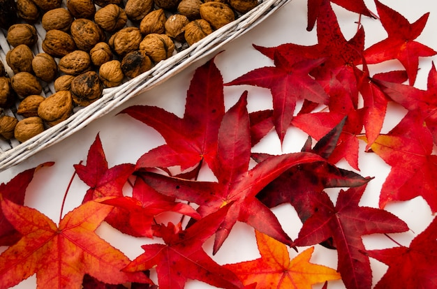 Nozes inteiras em uma cesta, amarelo vermelho e folhas secas de outono marrons, colheita