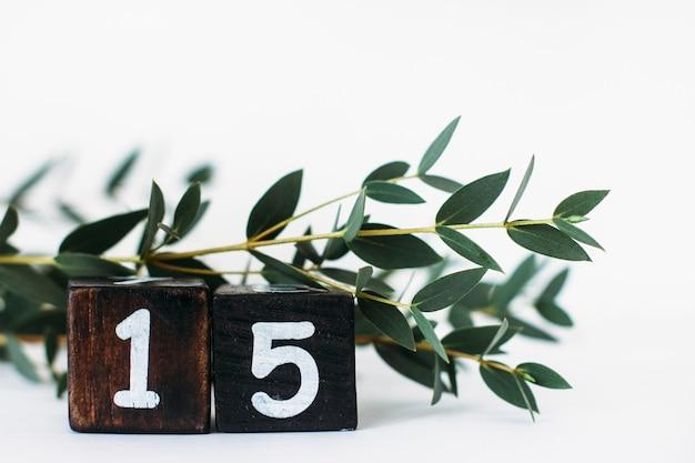 Numero 15