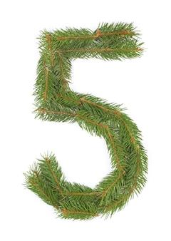 Número 5 - feito de árvore de natal em um espaço em branco