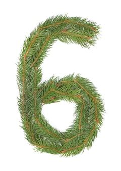 Número 6 - feito de árvore de natal em um espaço em branco