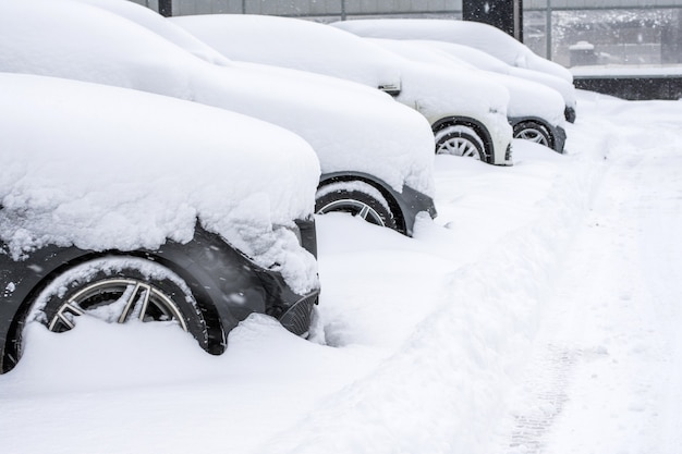 Número de carros estacionados com neve, vista do capô da roda dianteira e do para-choque.