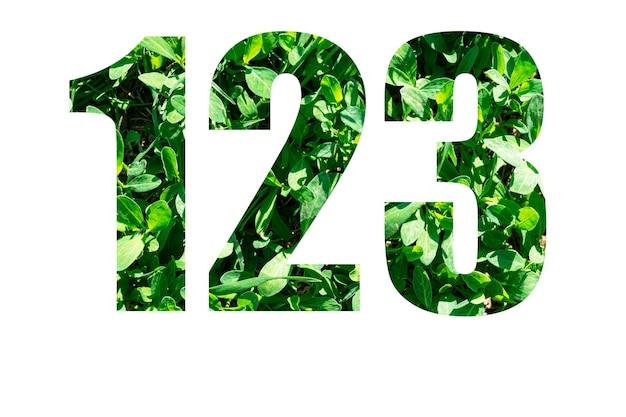 Números 1 2 3 da grama verde isolada no fundo branco. elementos para o seu design.