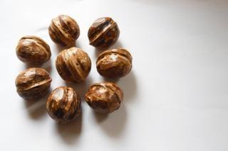 Nut iii mandala.