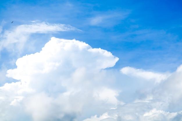 Nuvem branca, em, verão, claro, céu azul, fundo