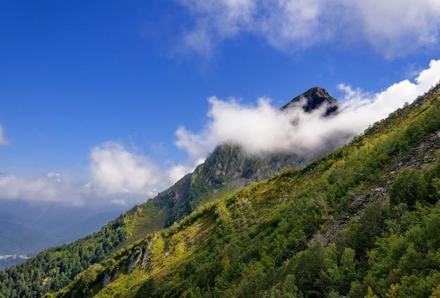 Nuvem oculta do pico da montanha. verão.