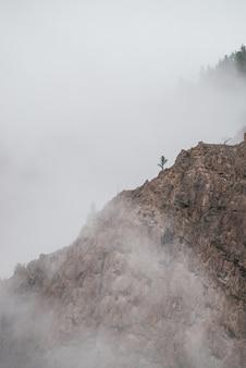 Nuvens baixas entre rochas