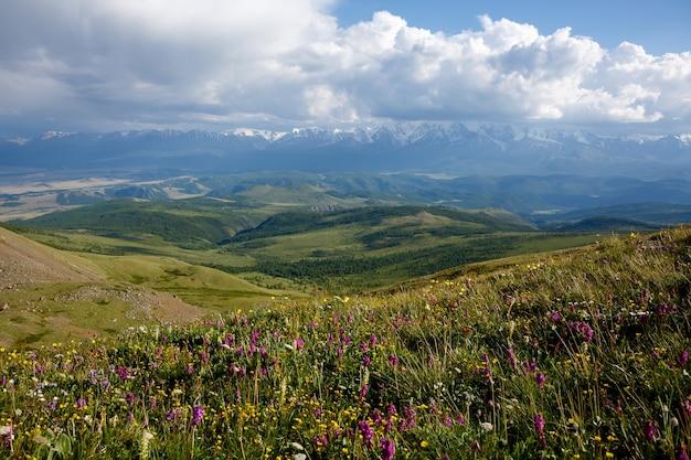 Nuvens brancas sobre montanhas nevadas e colinas verdes, campos de flores