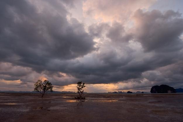 Nuvens chuvosas sobre uma área aberta de maré baixa.