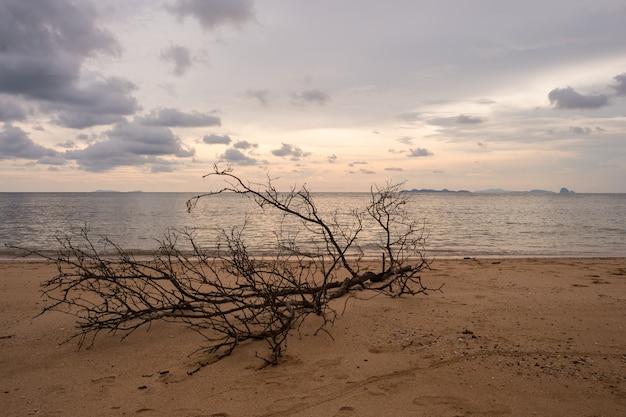 Nuvens de tempestade e pôr do sol na praia de koh libong em trang, tailândia