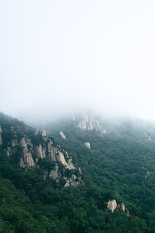 Nuvens e névoa no parque