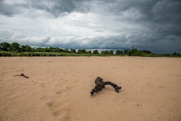 Nuvens escuras e precipitação de uma tempestade sobre dunas de areia no rio moon, rural surin, tailândia