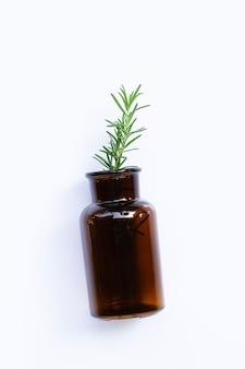 O alecrim fresco sae na garrafa de vidro no fundo branco.