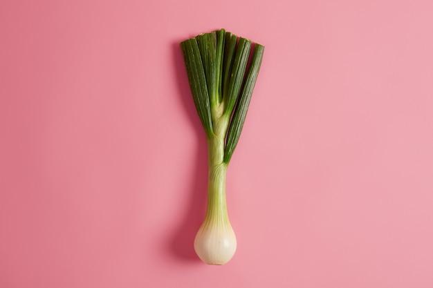 O alho-poró verde com sabor doce pronto para cozinhar, oferece inúmeros benefícios para a saúde, contém uma variedade de nutrientes, muito baixo teor calórico, pode ser adicionado à sua dieta, sopas, saladas ou ensopados. rampa selvagem fresca