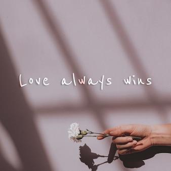 O amor sempre vence a citação na parede e na mão segurando uma flor