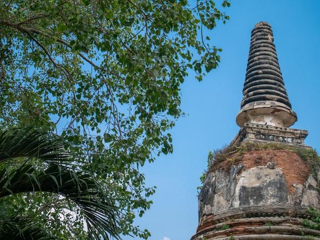 O antigo pagode de tijolo com galho de árvore no céu azul na tailândia