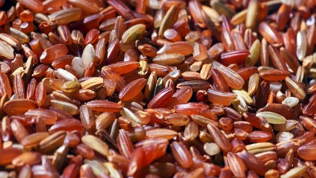 O arroz integral vermelho orgânico é um ótimo alimento para a saúde das pessoas