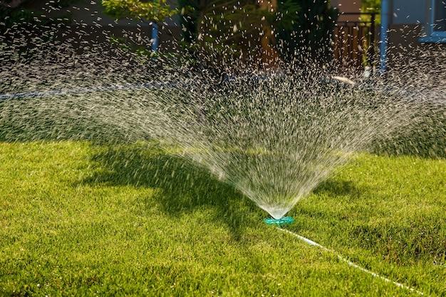 O aspersor de água é um gramado verde