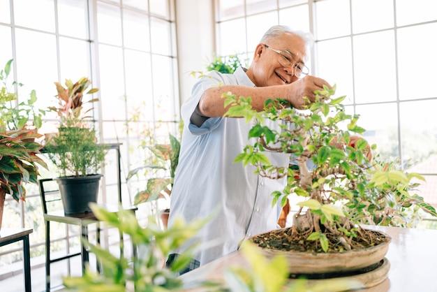 O avô aposentado asiático adora cuidar das plantas em um jardim interno da casa.