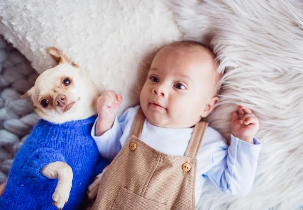 O bebê com cachorro fica no tapete