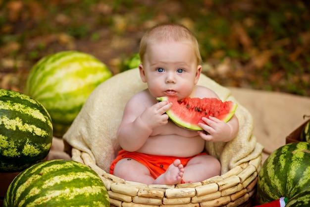 O bebê em uma cesta come uma melancia