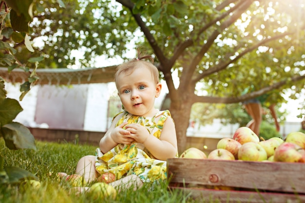 O bebê jovem feliz durante a colheita de maçãs em um jardim ao ar livre