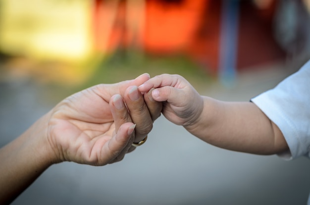 O bebê segura a mão da mãe, mãe e filha estão segurando as mãos.