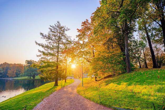 O beco do parque de outono. a temporada é outono. setembro outubro novembro. uma nova temporada. folhas amarelas. um lindo parque. luz da manhã. . natureza