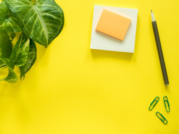 O bloco de notas para notas, planta verde sae no desktop amarelo, configuração lisa, espaço da cópia.