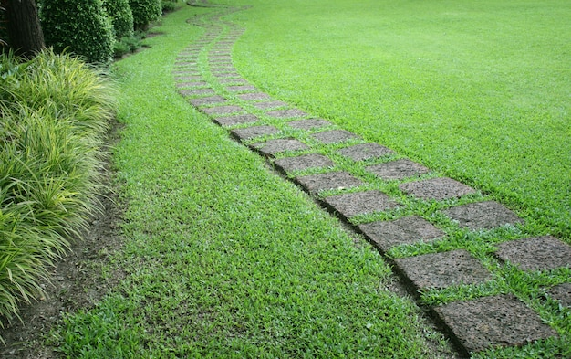 O bloco de pedra a pé caminho no jardim com grama verde