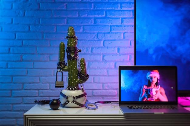 O cacto se vestiu com acessórios para jogos de bdsm na mesa ao lado da tv e do laptop com a imagem de uma garota em luz neon