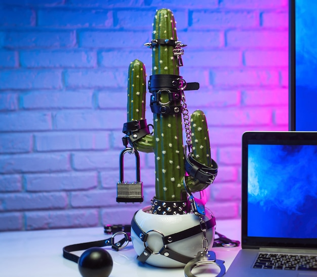 O cacto se vestiu com acessórios para jogos de bdsm na mesa ao lado da tv e do laptop em luz neon