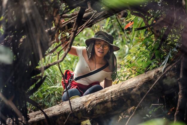 O caminhante asiático da mulher está caminhando na floresta em férias