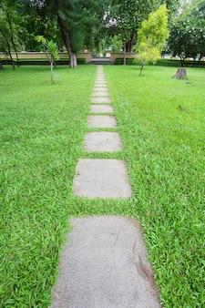 O caminho a pé no parque com fundo de grama verde