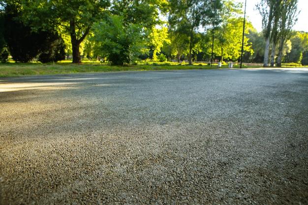 O caminho da estrada no parque da cidade com árvores e grama