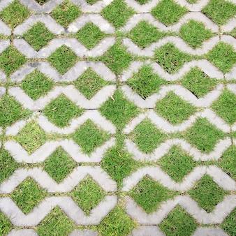 O caminho de bloco de pedra a pé no parque com fundo de grama verde