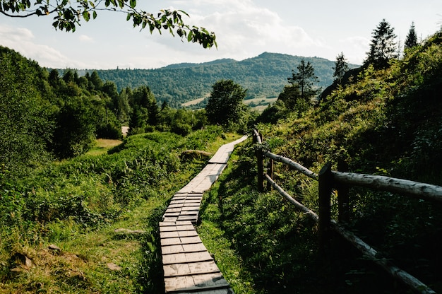 O caminho de madeira na floresta leva às grandes montanhas